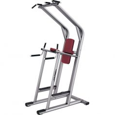Chin / Dip / Leg Raise Signature Series - Life Fitness (Bancos)